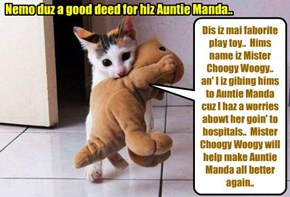 Nemo iz bery conserned abowt his Aunt Manda cuz she wer taken to teh kitteh hospitals to hab her babies..