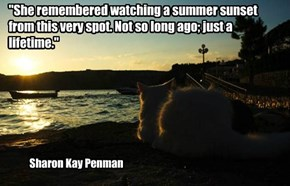 """""""She remembered watching a summer sunset from this very spot. Not so long ago; just a lifetime."""""""