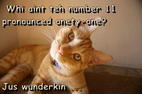 Whi aint teh number 11 pronounced onety-one?   Jus wunderkin ...