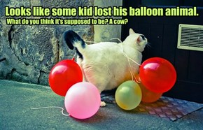 Looks like some kid lost his balloon animal.