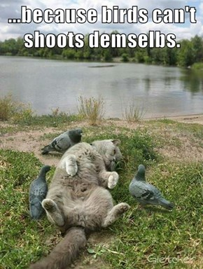 ...because birds can't shoots demselbs.
