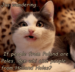 Jus wundering..   If people from Poland are  Poles, den whi aint people from Holland Holes?