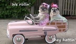 We rollin'  They hattin'