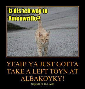 YEAH! YA JUST GOTTA TAKE A LEFT TOYN AT ALBAKOYKY!