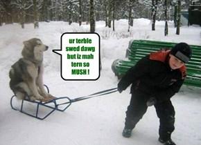 ur terble swed dawg but iz mah tern so MUSH !