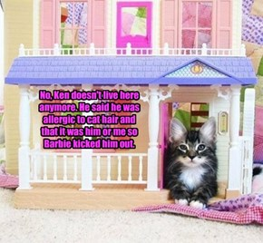 No, Ken doesn't live here anymore. He said he was allergic to cat hair and  that it was him or me so Barbie kicked him out.
