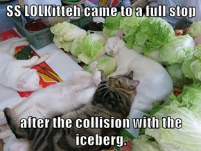 SS LOLKitteh came to a full stop  after the collision with the iceberg.