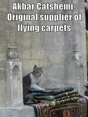 Akbar Catshemi-  Original supplier of flying carpets