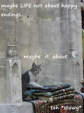 maybe LIFE not about happy endings..    maybe  it  about                        teh *stawy*