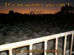 It's no wonder you can't sleep  You counted wrong.