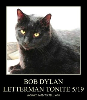 BOB DYLAN  LETTERMAN TONITE 5/19