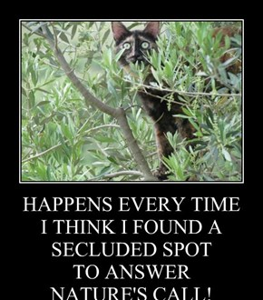 HAPPENS EVERY TIME I THINK I FOUND A SECLUDED SPOT TO ANSWER NATURE'S CALL!