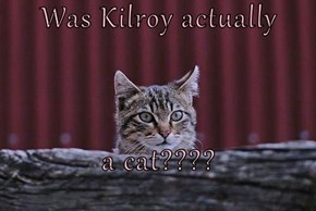 Was Kilroy actually  a cat????