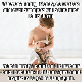 Whereas family, friends, co-workers and even strangers will sometimes let us down.  we can always count on the love our cats have for us to lift our spirits and inspire us to get back up again.