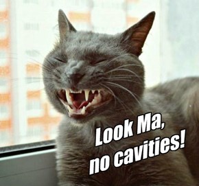 Look Ma, no cavities!