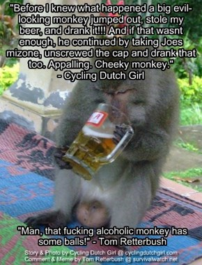 """Before I knew what happened a big evil-looking monkey jumped out, stole my beer, and drank it!!! And if that wasnt enough, he continued by taking Joes mizone, unscrewed the cap and drank that too. Appalling. Cheeky monkey.""  - Cycling Dutch Girl"