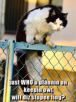 just WHO u plannin on keepin owt                                          wiff diz stupee fing?