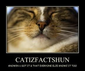 CATIZFACTSHUN