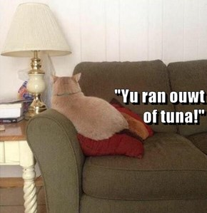 """Yu ran ouwt                                                of tuna!"""