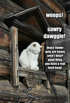 woops!  sawry dawggie!