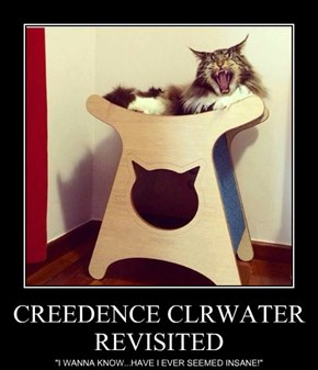 CREEDENCE CLRWATER REVISITED