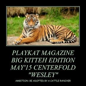 "PLAYKAT MAGAZINE BIG KITTEH EDITION MAY'15 CENTERFOLD ""WESLEY"""