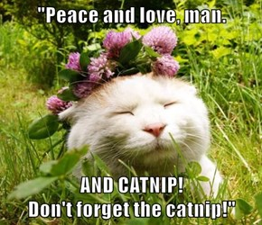 """Peace and love, man.  AND CATNIP!                                                               Don't forget the catnip!"""