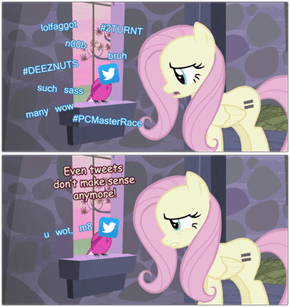 Fluttershy Doesn't Understand The Internet