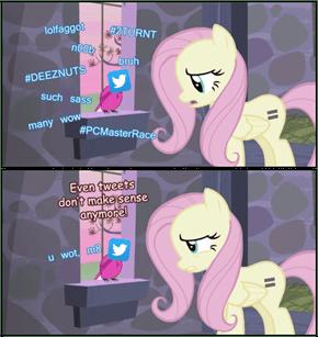 Fluttershy Doesn't Understand The Internet
