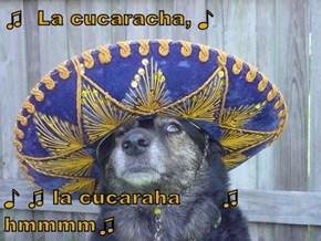 ♫  La cucaracha, ♪  ♪ ♫ la cucaraha      ♫ hmmmm♫