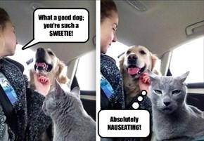 Jealousy is never pretty.