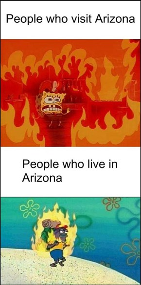 Arizonans Be Like...