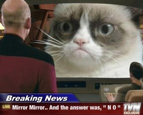 "Breaking News - Mirror Mirror.. And the answer was, "" N O """