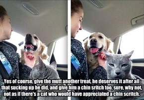 Yes of course, give the mutt another treat, he deserves it after all that sucking up he did, and give him a chin sritch too, sure, why not, not as if there's a cat who would have appreciated a chin scritch.