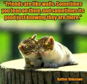 """""""Friends are like walls. Sometimes you lean on them, and sometimes its good just knowing they are there."""""""