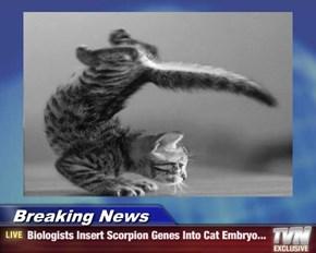 Breaking News - Biologists Insert Scorpion Genes Into Cat Embryo...