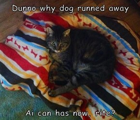 Dunno why dog runned away   Ai can has now, rite?