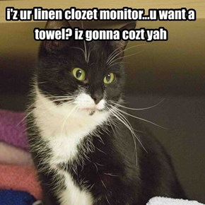 the art of negotiation mastered by kittehz