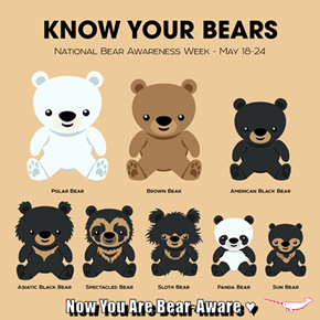 Now You Are Bear-Aware ♥