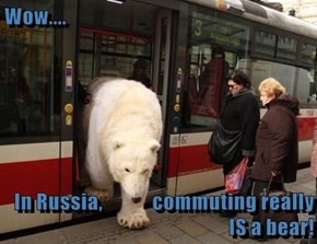 Wow....  In Russia,             commuting really IS a bear!
