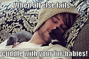 When all else fails ...  cuddle with your fur-babies!