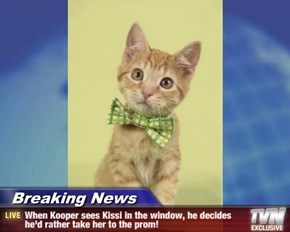 Breaking News - When Kooper sees Kissi in the window, he decides he'd rather take her to the prom!