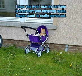 I hope you won't use my carriage to transport your offspring again. Diaper scent  is really persistant.