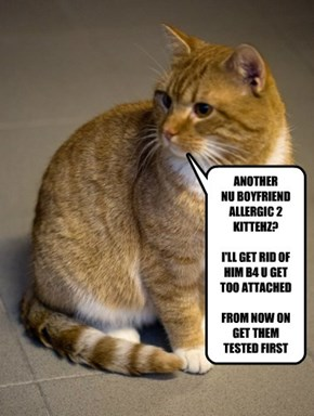 YOUR KITTEH & YOUR RELATIONSHIPS
