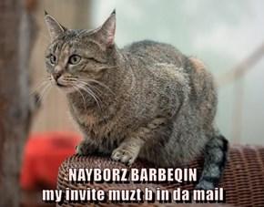 NAYBORZ BARBEQIN                                              my invite muzt b in da mail