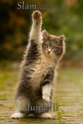 Slam............  dunk!!!!