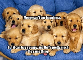 It Can Buy A Lot Of Puppies