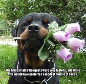 The bridesmaids' bouquets were very tasteful, but Millie still would have preferred a modest bundle of bacon.