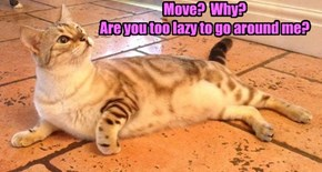 Move?  Why?  Are you too lazy to go around me?