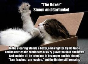 """The Boxer"" : Simon and Garfunkel"